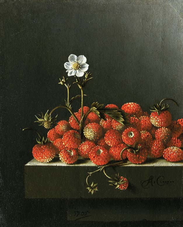 Adriaen Coorte, Strawberries, 1705 The Hague, Mauritshuis